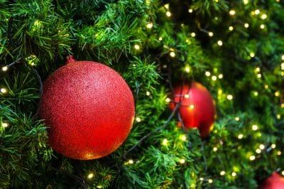 Cute Christmas Phrases│New Christmas Phrases